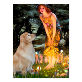 Golden Retriever 11 - Mid Eve Post Card
