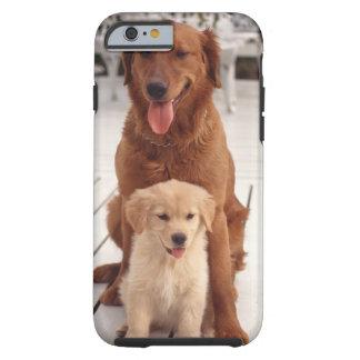 Golden Retriever 2 Tough iPhone 6 Case