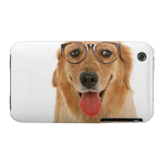 Golden Retriever 3 iPhone 3 Cases