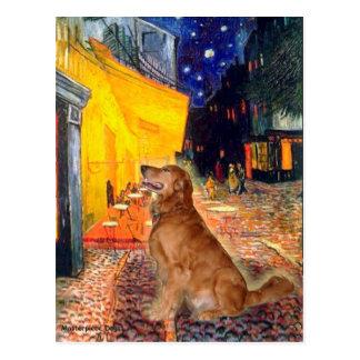 Golden Retriever 3 - Terrace Cafe Postcard