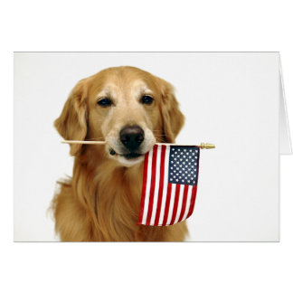 Golden Retriever 4th of July Card