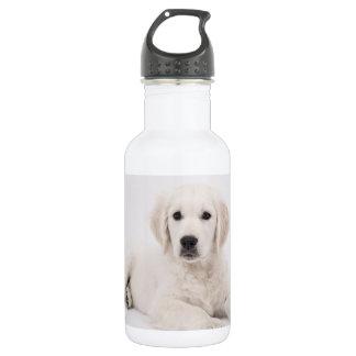 Golden Retriever 532 Ml Water Bottle