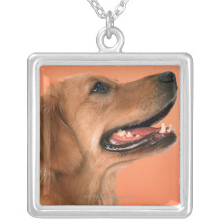 Golden Retriever 7 Silver Plated Necklace