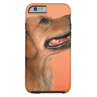 Golden Retriever 7 Tough iPhone 6 Case