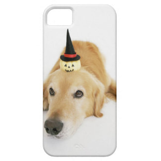 Golden retriever and ornament barely there iPhone 5 case