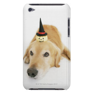 Golden retriever and ornament barely there iPod cover