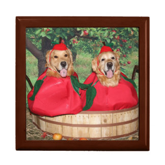 Golden Retriever Apples in a Basket Gift Box