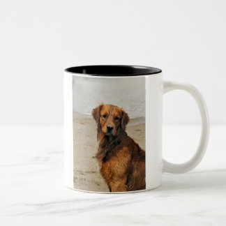 Golden Retriever  Art Gifts Two-Tone Coffee Mug