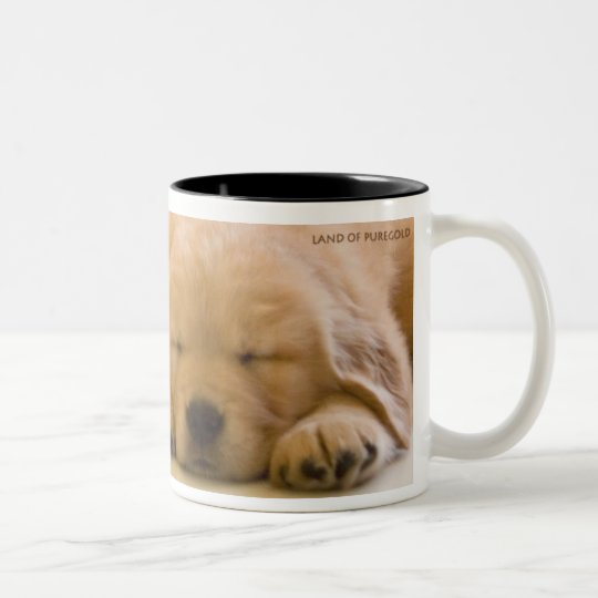 Golden Retriever Babies Two-Tone Coffee Mug