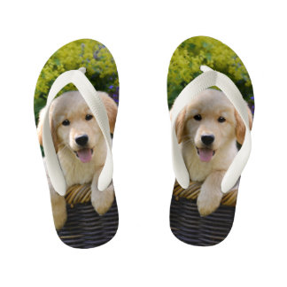 Golden Retriever Baby Dog Puppy Funny Photo - Kids Flip Flops