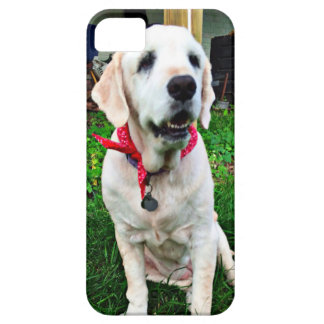 Golden Retriever Barely There iPhone 5 Case