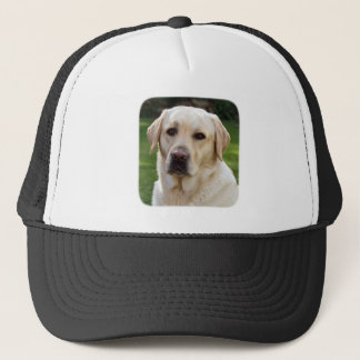 Golden Retriever Baseball / Trucker Hat