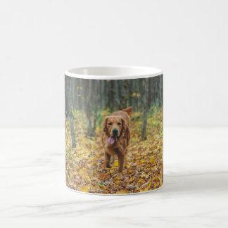 Golden retriever beautiful picture mug