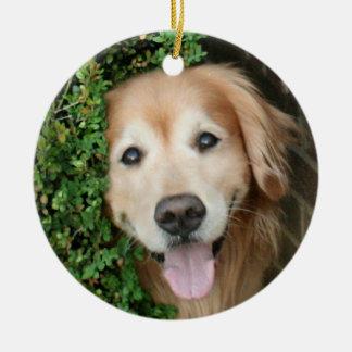 Golden Retriever Behind A Smile Christmas Ornament