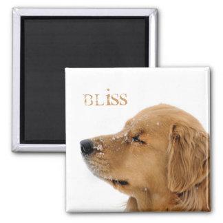 Golden Retriever Bliss Text Square Magnet