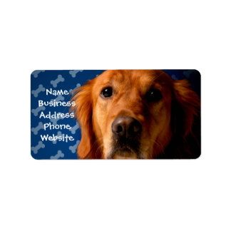 Golden Retriever blue bone background Address Label