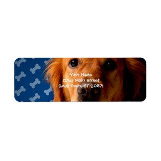 Golden Retriever blue bone background Return Address Label