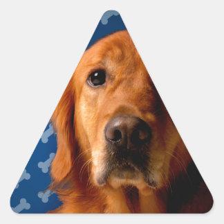 Golden Retriever blue bone background Triangle Sticker