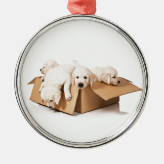 Golden Retriever Box of Fun Christmas Ornament