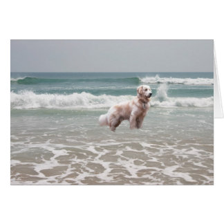 Golden Retriever By The Sea Card