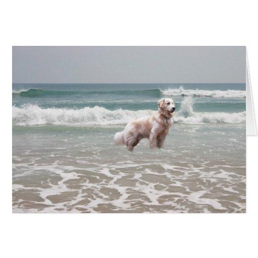 Golden Retriever By The Sea Card