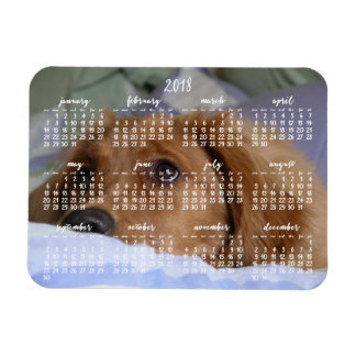 Golden Retriever Calendar 2018 Photo Magnet Small