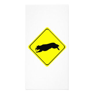Golden Retriever chasing ball Crossing Sign Photo Card