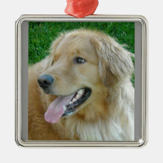 Golden Retriever Close-up Christmas Ornament