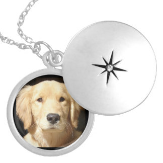 Golden Retriever Closeup Silver Plated Necklace