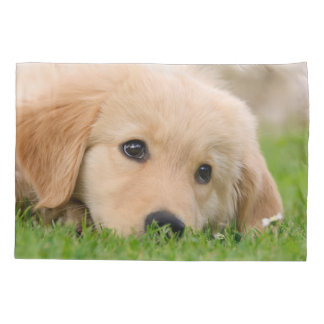 Golden Retriever Cute Dog Puppy Dream Pillow-Cover Pillowcase