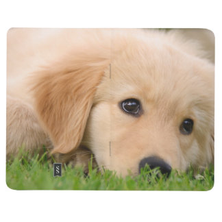 Golden Retriever Cute Puppy Dreaming Photo  Pocket Journal