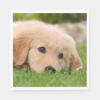 Golden Retriever Cute Puppy Dreams Dog Head Photo Disposable Serviettes