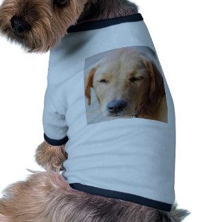 Golden Retriever Dog #2 Pet T-shirt