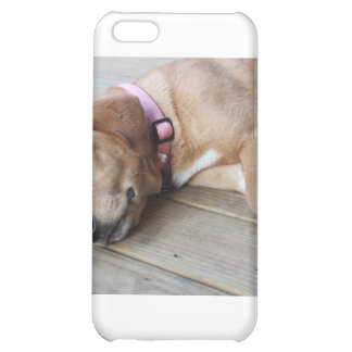 Golden Retriever Dog 3 Cover For iPhone 5C