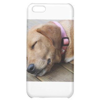 Golden Retriever Dog #4 Cover For iPhone 5C