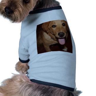 Golden Retriever Dog #5 Doggie Shirt