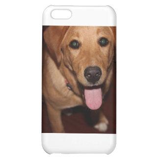 Golden Retriever Dog 5 iPhone 5C Cover