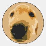 GOLDEN RETRIEVER DOG BROWN CLASSIC ROUND STICKER