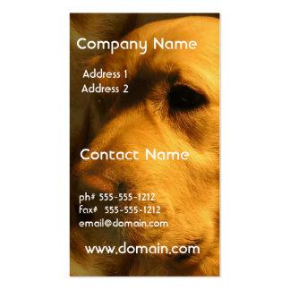 Golden Retriever Dog  Business Cards