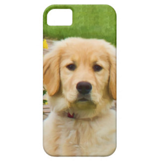 Golden Retriever Dog iPhone 5 Covers