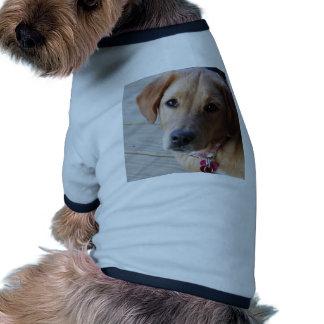 Golden Retriever Dog Pet Tee Shirt