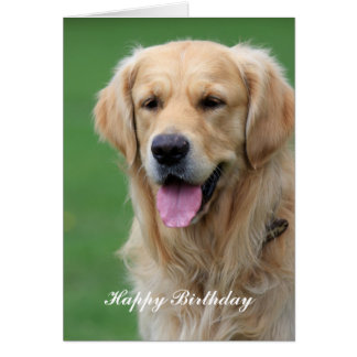 Golden Retriever dog happy birthday greeting card
