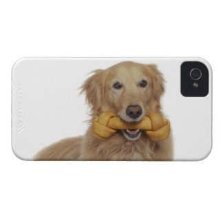 Golden Retriever Dog holding bone in mouth iPhone 4 Case-Mate Case