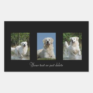 Golden Retriever dog lovers custom stickers
