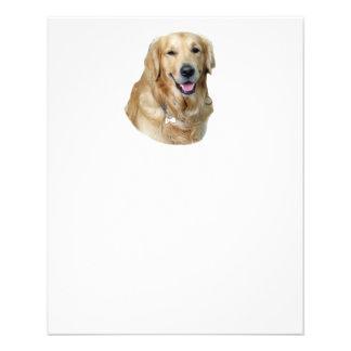 Golden Retriever dog photo portrait 11.5 Cm X 14 Cm Flyer