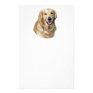 Golden Retriever dog photo portrait 14 Cm X 21.5 Cm Flyer