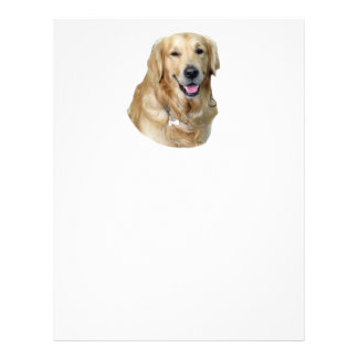 Golden Retriever dog photo portrait 21.5 Cm X 28 Cm Flyer