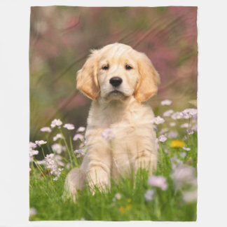 Golden Retriever Dog Puppy, comfortable Fleece Blanket