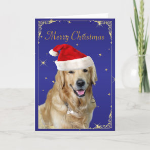 Golden Retriever dog red santa hat christmas card