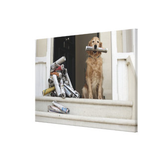 Golden retriever dog sitting at front door canvas print
